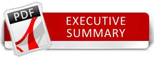 download executive summary
